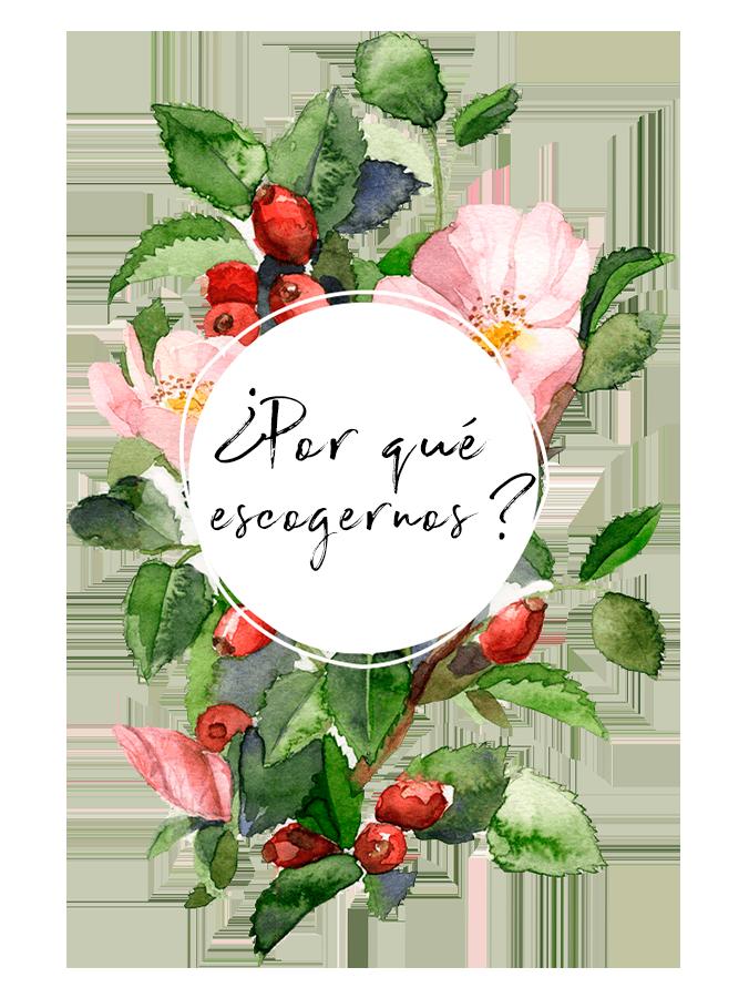 floriteria en bogota